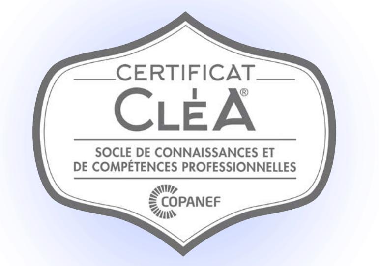G2R Formation est centre évaluateur CLEA